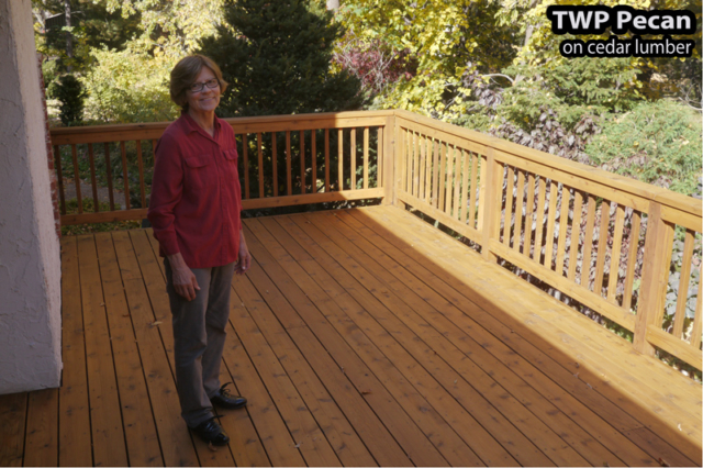 Eden Prairie Wood deck restored and stained with TWP Pecan